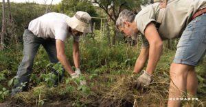 permacultura para vecinos